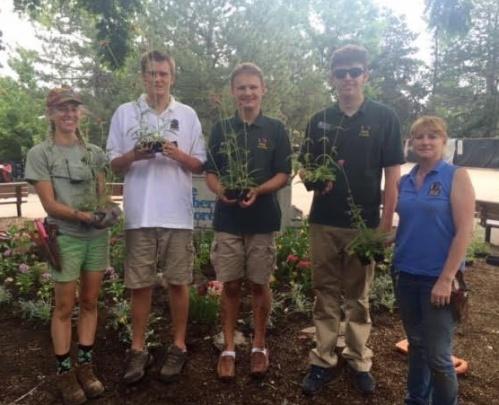 Volunteering AM- Jovial Gardens