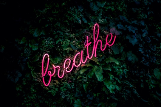 Sweat, Healthy Living, & Mindfulness (Meditation) @ REVEL Lounge